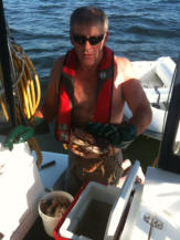 Cleaning Dungenus Crabs - Fishing Charters at BC Fishing Charters, Gibsons